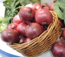 美國美樂洋蔥(紅/紫皮)