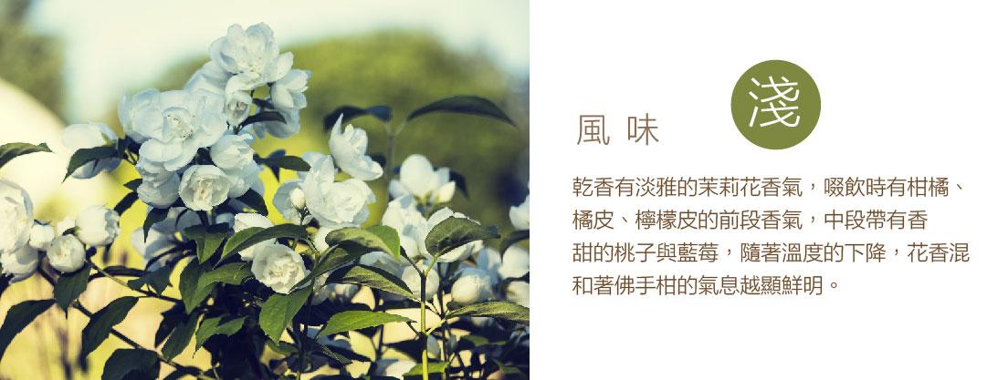 科洽雷-02.jpg