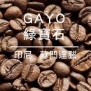 GAYO綠寶石 淺烘/22點