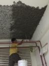 地下室頂板 (11)