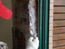 窗台--到-103.12月 135