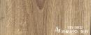 vns-5602 坎帕尼亞 黃杉