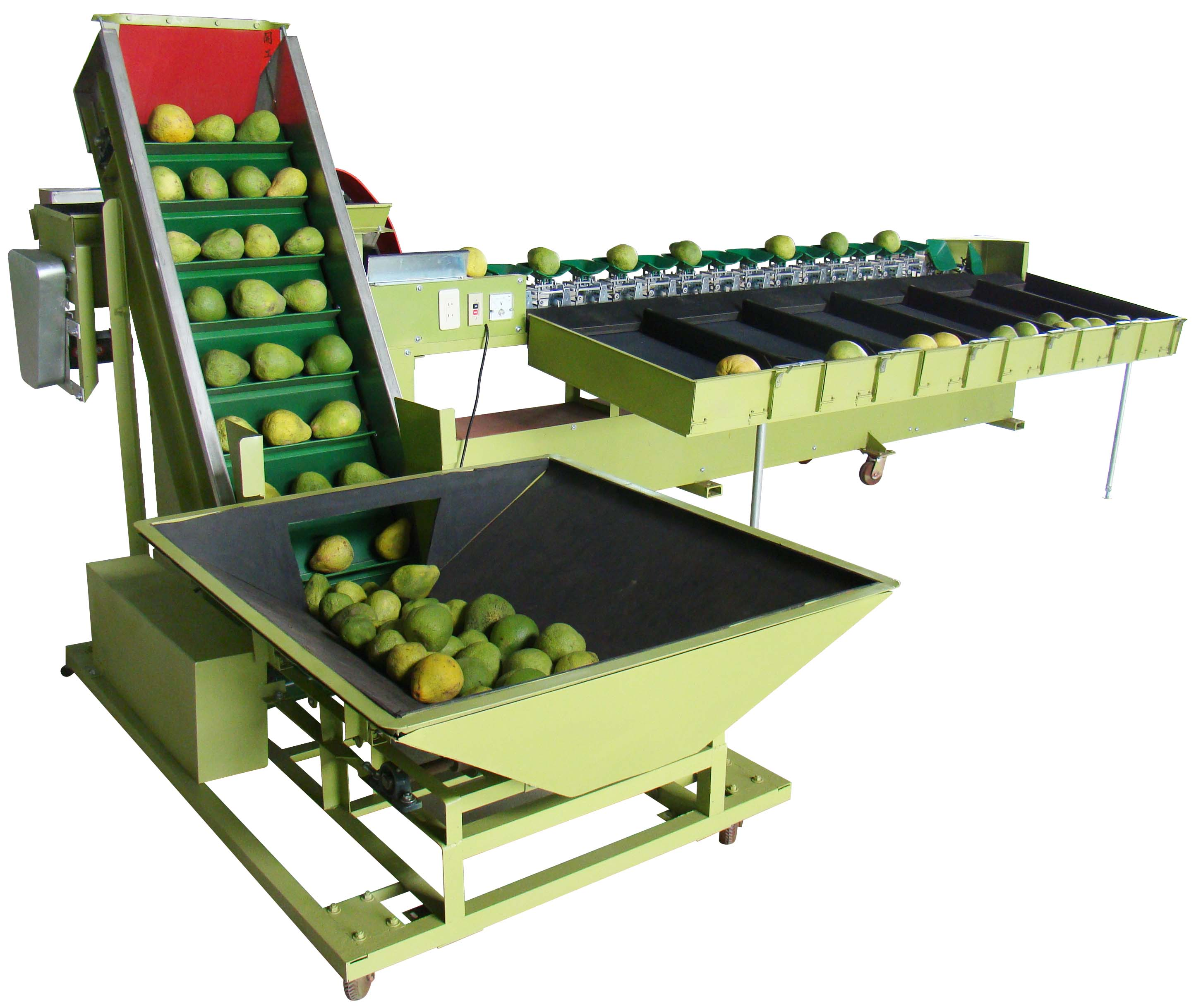 CL-27 文旦柚、番石榴重量式分級機
