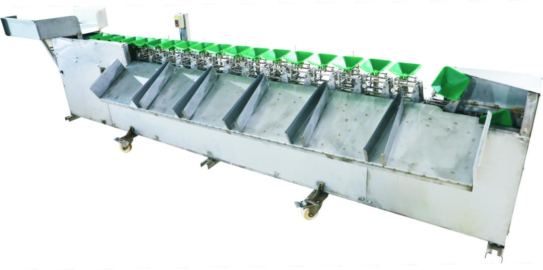 CL-38 不鏽鋼魚貝肉類重量式分級機
